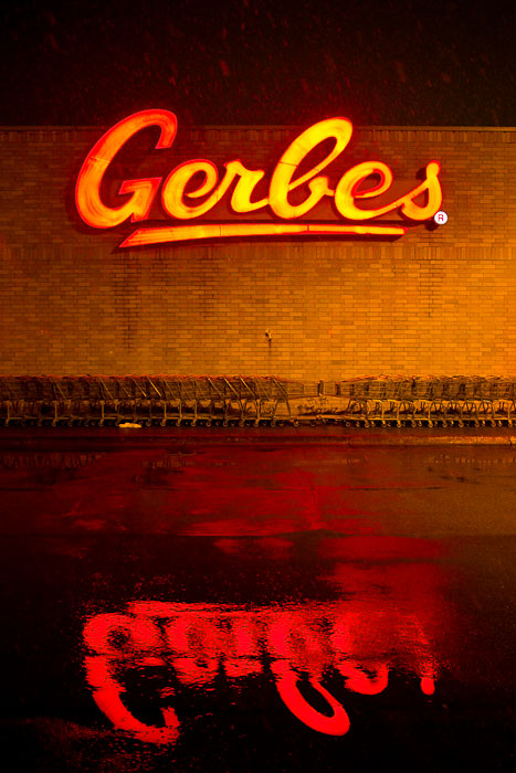 Thirty Days - Day Seven - Gerbes before the snow