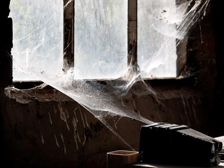 2nd Thirty Days - Day Twenty-six - Cobwebs in the garage, Durham, N.C.