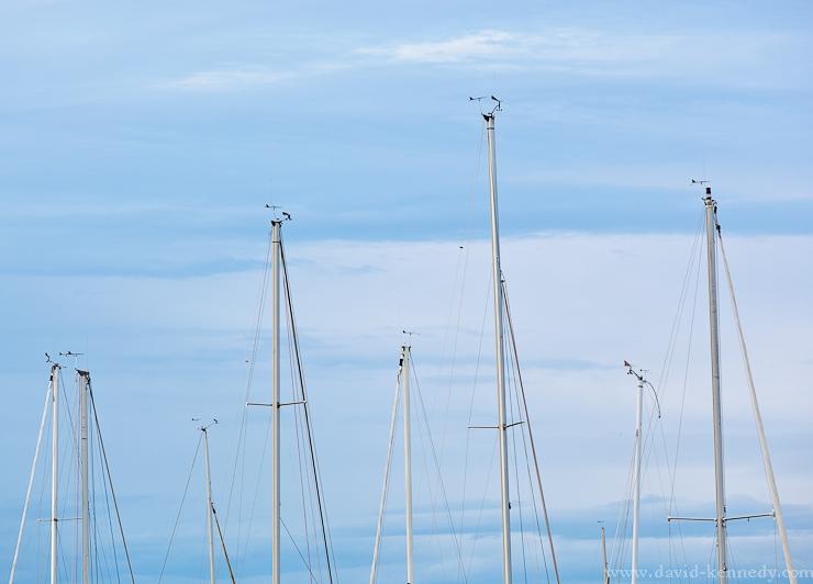 Masts of sailboats