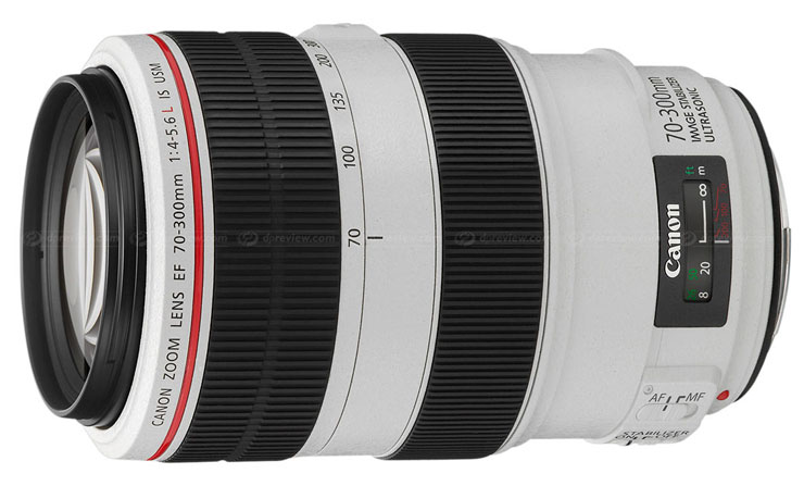 Canon 70-300mm f/4-5.6L zoom lens.  Image from DPReview.com.