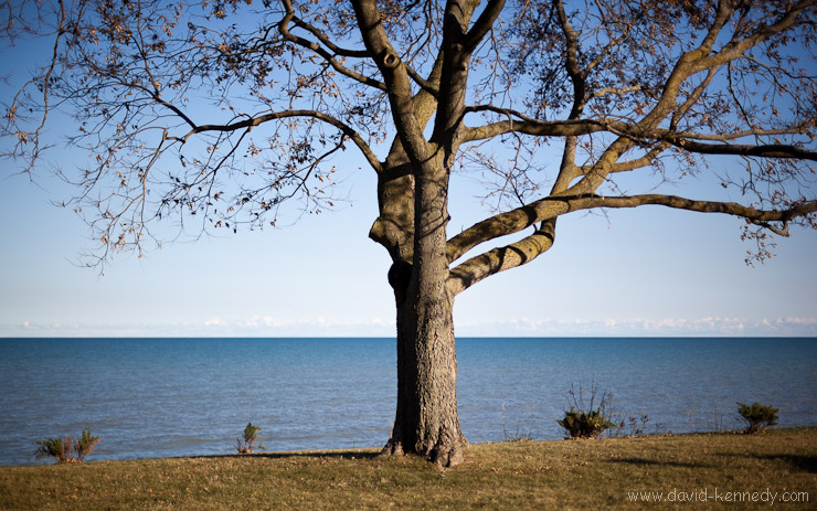 Looking out onto Lake Michigan