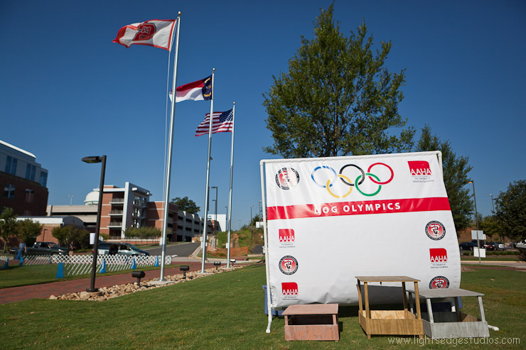 NCSU College of Veterinary Medicine's 2011 Dog Olympics